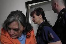 Miluše Diblíková byla za zabití vlastního syna odsouzena k osmi rokům vězení.