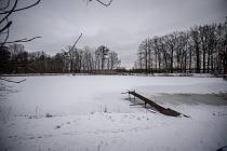 V Ostravě zůstávají zamrzlé plochy pod sněhem. Na snímku rybník v Nové Bělé.