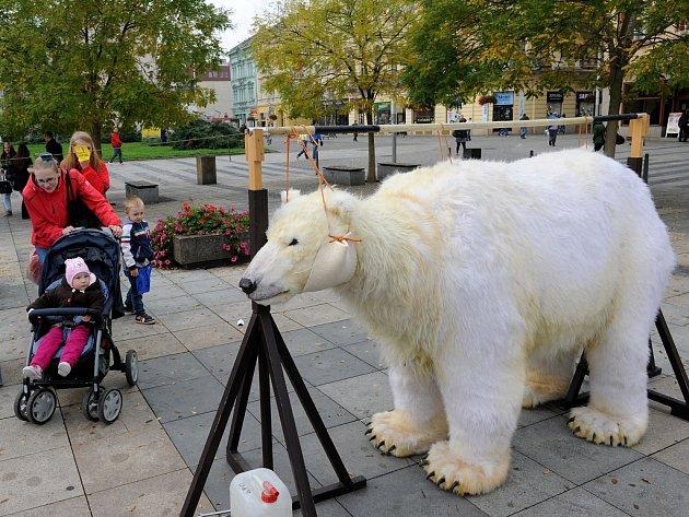 Medvědice Paula bojuje za Arktidu.