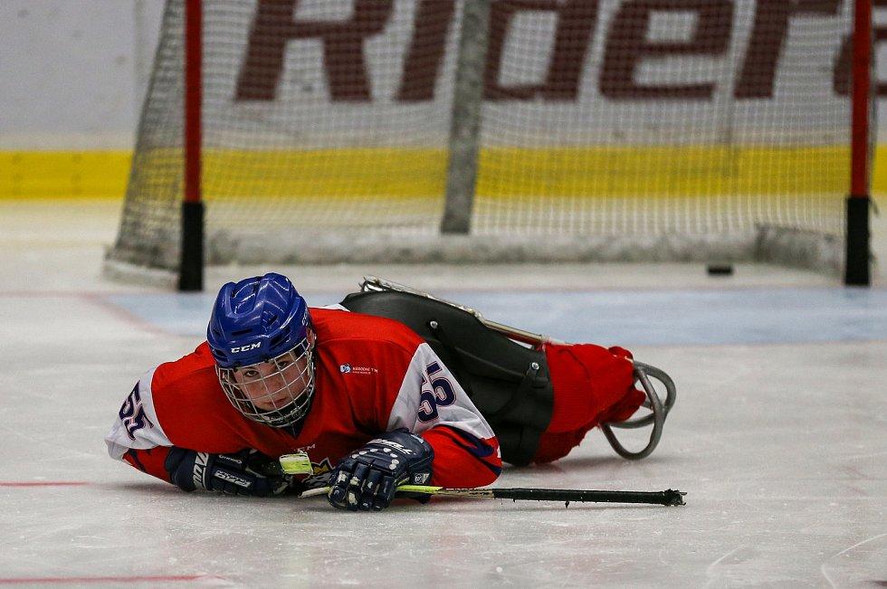 Tisková konference k Mistrovství světa v para hokeji 18. ledna 2019 v Ostravě. Na snímku para hokejista Veselý.