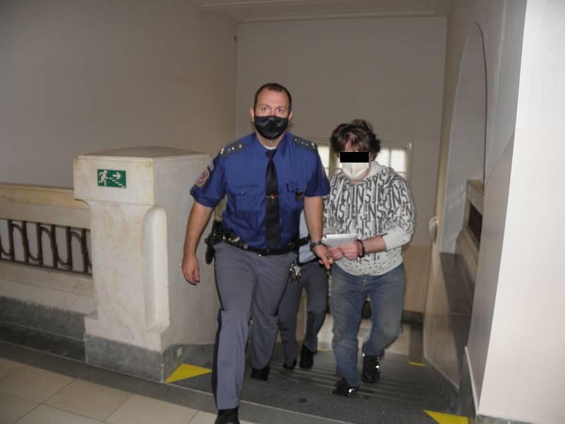 Muž se k činu přiznal o navrhl dohodu o vině a trestu.