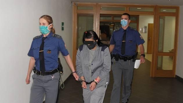 Soud ženu potrestal čtyřletým vězením za křivé obvinění dozorkyně.
