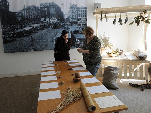 Pracovníci dvou odlišných vědeckých světů si pro návštěvníky Ostravského muzea připravili výstavu s názvem Cesty koření a užitkových rostlin do center vyspělých civilizací.