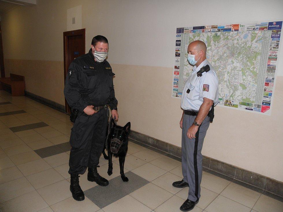 Justiční stráž a vězeňská služba nemusely řešit žádný incident.