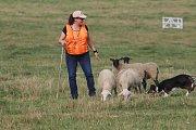V srpnu hostila Česká republika dokonce mistrovství Evropy v pasení ovcí. Konalo se v Dolním Dvořišti na jihu Čech.