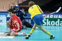 Pavel Brus v utkání se Švédskem
