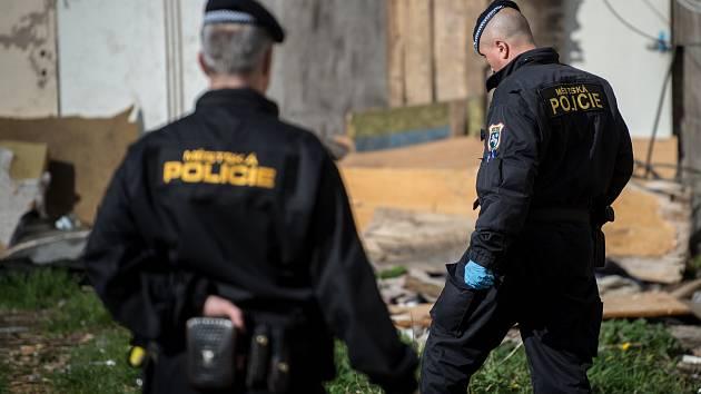 Jehly a injekční stříkačky odhozené narkomany pravidelně sbírají také strážníci městské policie. Ilustrační foto.