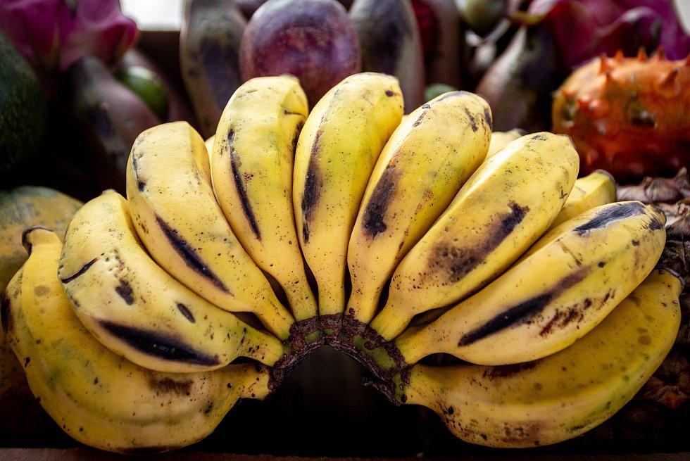 Africké trhy Virunga v Trojhalí, 8. února 2020 v Ostravě.