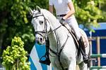 Jezdectví - Velká cena Ostravy (český skokový pohár), 18. května 2019 ve Staré Bělé. Na snímku Tereza Mücková.