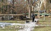 Zámecký park v Ostravě-Porubě.