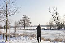 Pohled na rybník Nezmar.