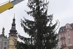 Do centra Ostravy dorazila dominanta vánoční výzdoby. Dvanáctimetrový smrk přivezli na Masarykovo náměstí z polesí v Horní Čeladné.