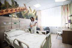 Nový nadstandardní pokoj (chirurgické lůžkové oddělení) ve Vítkovické nemocnici, 31. října 2018 v Ostravě. Na snímku  vrchní sestra chirurgického oddělení Nina Hrtanová.