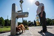 Veřejné pítko, z něhož se na Hlavní třídě v Ostravě-Porubě mohou osvěžit nejen lidé, ale i zvířata!