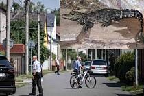 Policisté se strážníky v Ostravě pátrají po ztraceném krokodýlovi.