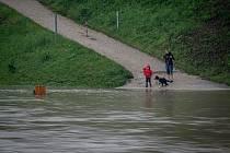 Povodňový stupeň na řece Ostravice která leží v centru Ostravy, 22. června 2020.