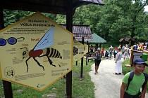 V ostravské zoo mají jednu novinku. V blízkosti voliér ptáků otevřeli interaktivně naučnou expozici s názvem Včelí stezka.