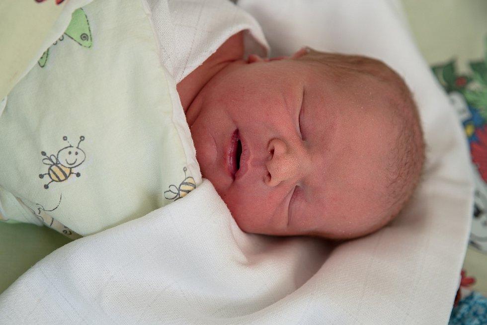 Alex, narozen 10. dubna 2021 v Karviné. Foto: Marek Běhan