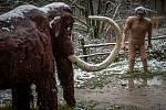 Pravěké sídliště v Hornickém muzeu Landek, kde vzniká nový model pravěkého mamuta, 7. ledna 2021 v Ostravě. Autorem je bývalý havíř Miloš Schaffelhofer