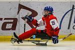Tisková konference k Mistrovství světa v para hokeji 18. ledna 2019 v Ostravě. Na snímku para hokejista Ohar.