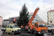 Od středy stojí na Masarykově náměstí v centru Ostravy vánoční strom
