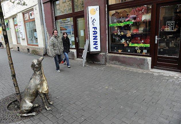 Tento pes má upozornit na novou prodejnu kabelek. Podobných reklam ale v centru města moc nenajdete.