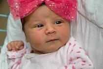 Laura Hegedüsová, Orlová, narozena 21. června 2021 v Karviné, míra 50 cm, váha 3380 g. Foto: Marek Běhan