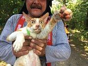 Záchrana kočky v Kyjovicích.