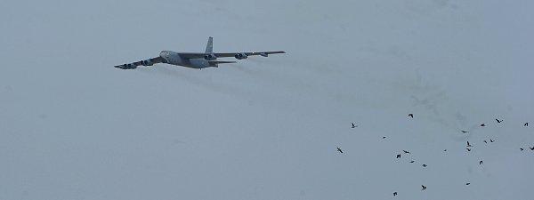 Dva legendární bombardéry B 52přistály vúterý na Letišti Leoše Janáčka Ostrava. Obří stroje patří mezi největší atrakce letošního ročníku akce Dny NATO.