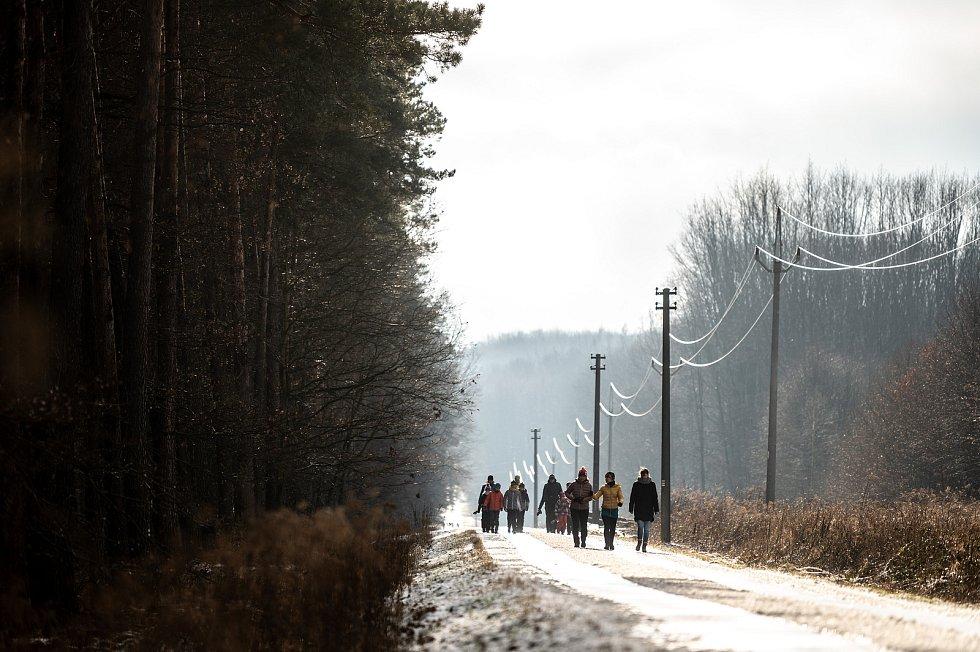 Přírodní rezervace Černý les Šilheřovice. 24. ledna 2021.