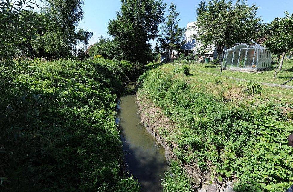Zápach, uhynulé ryby, nánosy, splašky – tak vypadá Antošovický potok. Znepříjemňuje život hlavně místním chatařům.