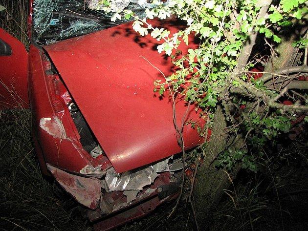 Renault se v noci na středu srazil s dvěma koňmi na Místecké ulici v Ostravě-Hrabové.