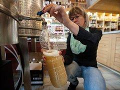 Posledního srpna začali ve vinotéce Ostrawina prodávat burčák od moravského vinaře.