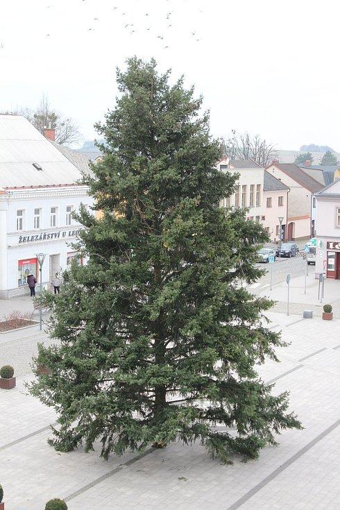 Vánoční strom na Mírovém náměstí v centru Hlučína.