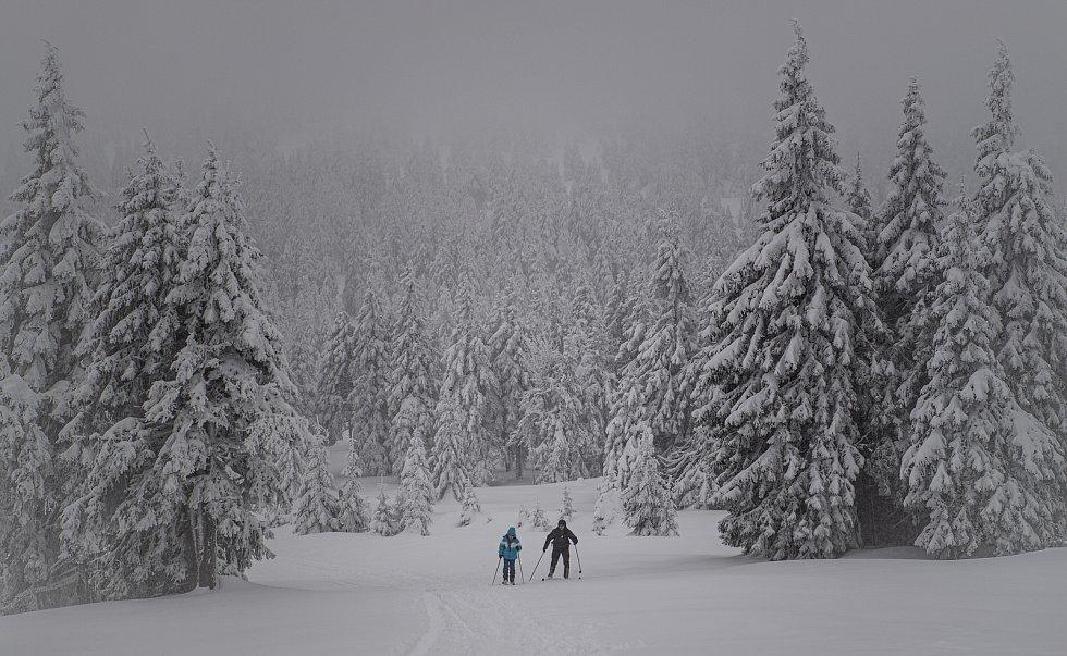 Běžkaři v Jeseníkách, 30. ledna 2021 na Pradědu.