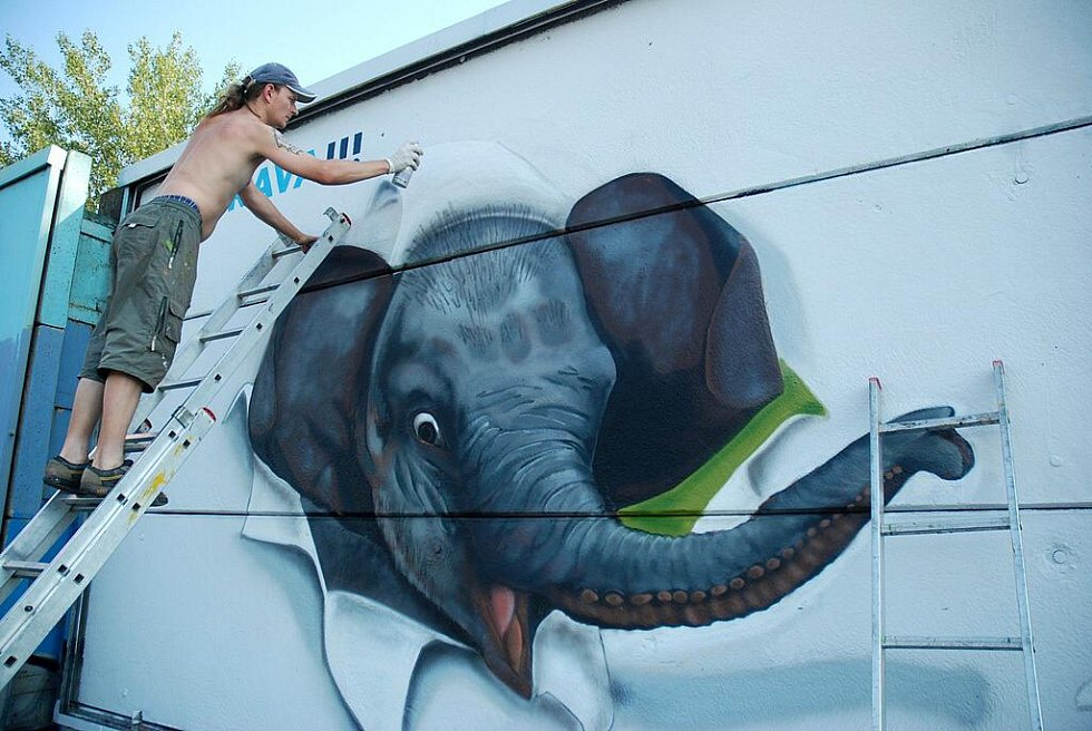 Sloní samička Rashmi i její máma Johti jsou nyní k vidění i na legální graffiti ploše – odhlučňovacích stěnách v Ostravě – Nové Vsi na ulici 28. října. Pro ostravskou zoologickou zahradu malbu navrhli a zrealizovali mladí lidé z výtvarné skupiny SPRAYART3