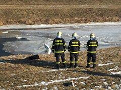 V Jilešovicích během posledních dvou týdnů zde bylo nalezeno čtrnáct uhynulých labutí. Posledních šest mrtvých kusů se z vodní plochy nedaleko splavu odstraňovalo v pondělí.