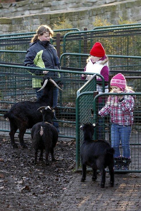 Ať už v kostele, nebo zoo. Ostravané se během vánočních svátcích nenudili. Někteří vyrazili i na Lysou horu.