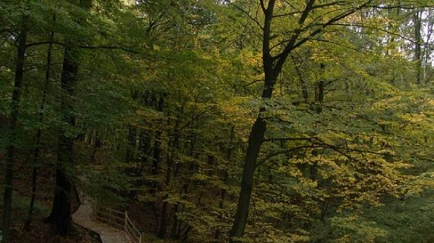 Podzim v ostravské zoo
