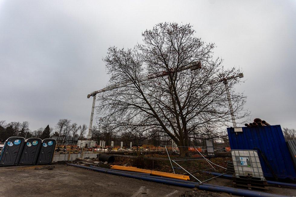 Výstavba nových budov Ostravské univerzity v Ostravě u výstaviště Černá louka.