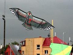 Počasí nepřálo, draci ale nakonec nad stadionem létali.