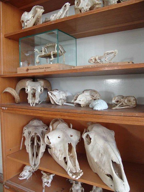 Výukové centrum v ostravské zoologické zahradě.