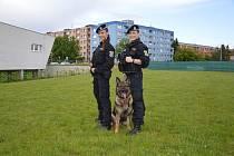 Strážnice (vlevo Alena Klapetková, vpravo Nikol Vítečková) slouží v řadách ostravské městské policie několik let.