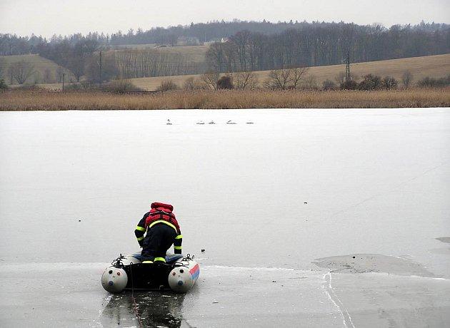 Ostravští hasiči se vypravili na pomoc labutím