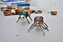 Odborná porota soutěže na Ostravský hmyzí mobiliář vybrala 22. dubna na svém setkání celkem 8 vítězných návrhů na hmyzí domky, které postupně během letošního roku vzniknou na osmi místech Ostravy.