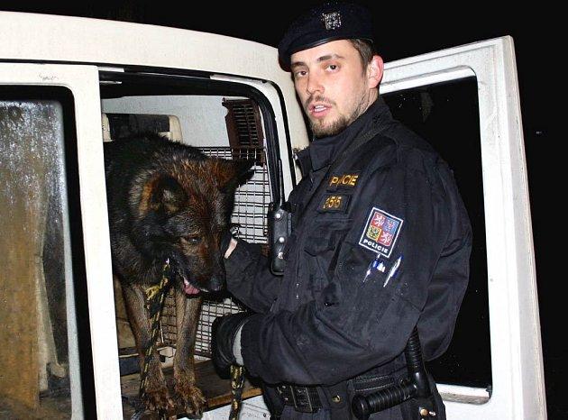 Policejní pes Artex