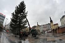 Vánoční smrk už stojí na Masarykově náměstí.