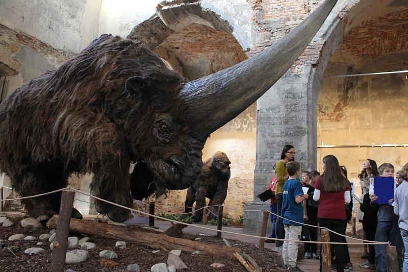 Výstava Giganti doby ledové v Opavě v roce 2014.
