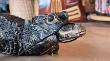 Mireček, pětiletý krokodýl čelnatý, je poprvé z terária venku, ale z výběhu na dvorku zmizel neznámo kam.