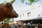 STRAČENA PUB najdete ve Výškovicích v ulici Lužická, má otevřeno každý den od 12 hodin a kromě sedmi druhů piva si tam můžete vybrat z řady domácích jídel.